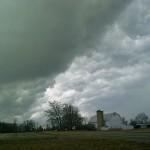 Weather bugs
